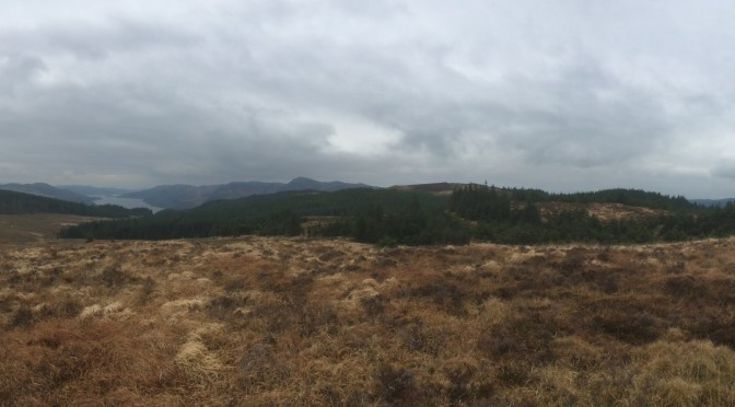 Panorama from Stronafian Community Forest to the blue afforested hills of Bute and Kilfinan