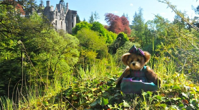 Georgia Bear & Co. visit Dunans Bridge with @thatpowanwoman and the results are Magical!