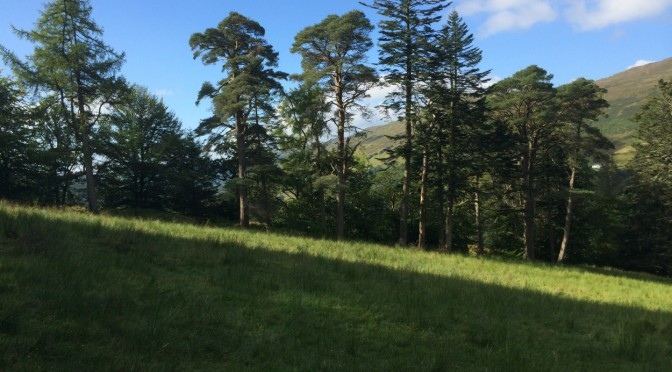 Gloriously Sunny September Sunday at Dunans